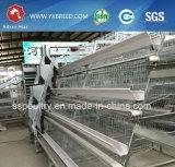 Cage d'oiseau de matériel de ferme avicole avec le système alimentant automatique