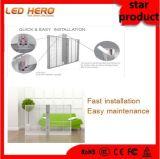 Visualización de pared video de cristal de interior caliente de la venta P10