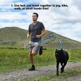 Erstklassige laufender Hundefreisprechleine mit ergonomischem Taillen-Riemen (KCY002)