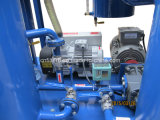 Decolorationの不用な植物油のろ過機械