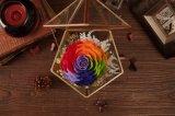 Manier 100% Natuurlijke Echt nam Bloem in Glas voor de Gift van de Verjaardag toe