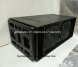 RS18 verdoppeln 18 Zoll Lsubwoofer Zeile Reihen-Lautsprecher