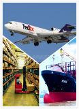 世界的に出荷を乾燥するために福州からの船便を強化しなさい