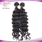Erstklassiges Remy Haar-italienisches lockiges Jungfrau-Peruaner-Haar
