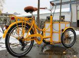Eilbote-Fahrrad-Familien-Gebrauch