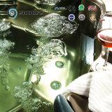 Equipo de lujo de la belleza del BALNEARIO del baño de vapor de la Lleno-Carrocería