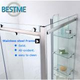 Kundenspezifische Größen-Edelstahl-materielle Dusche-Tür (BL-F3002)