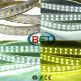 옥외 LED 리본 LED 지구 빛 두 배 줄 RGB 110V/220V