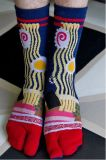 Носок платья собрания 2-Toe носка Tabi японского типа свободно