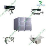 Ysstg0102 의학 2개의 문 시체 바디 냉장고