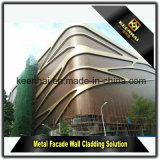 2017 comitati di parete di alluminio perforati di vendita calda per il rivestimento e la decorazione della facciata