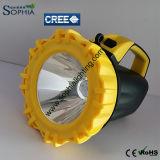 Apparecchi d'illuminazione resistenti alla corrosione potenti ricaricabili di 10W LED
