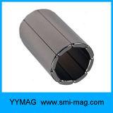 Магнит мотора этапа дуги редкой земли неодимия постоянный магнитный материальный