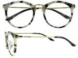 도매 Tr90 안경알 프레임 광학 프레임 Eyewear