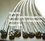 """ASTM un hilo de alambre de acero Cinc-Revestido 475 1*7 con la talla 1/4 """", 3/8 """", 5/16 """", 7/16 """", el 1/2 """""""