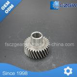 Transmisión del alimentador del piñón/engranaje de la rueda de corona en las piezas de automóvil de China