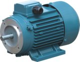 Iec 40W ~ 2200W Dreiphasenventilatormotor