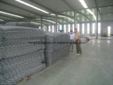 Ячеистая сеть PVC Coated Gabions сетчатая