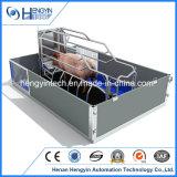 Cage neuve de porc de modèle/caisses de cochonnée de porc galvanisées par qualité