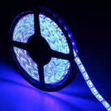 Quality 높은 5m 미국 유럽 등등에 Christmas Xmas Wedding Parties Halloween Decoration Light Free Shipping를 위한 300LED 세륨 RoHS Certifications LED Strip Light