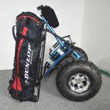 """Carro de golfe elétrico, """"trotinette"""" de equilíbrio do golfe do auto de 2 rodas"""
