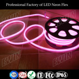 옥외 점화를 위한 Ce&RoHS&FCC 증명서를 가진 12V LED 네온 코드