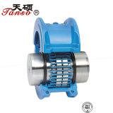 Accoppiamento professionale di griglia di Js di fabbricazione della Cina per le pompe