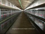 Bratrost Cage für Geflügelfarm