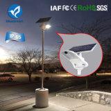 Jardin de lumière de détecteur solaire allumant la lampe économiseuse d'énergie avec la batterie au lithium