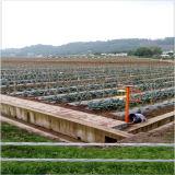 Type automatique lampe solaire d'inverseur de contrôle d'insectifuge de C.C de DEL