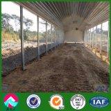 Prefabricated 가벼운 강철 구조물 가금은 흘렸다 (XGZ-A041)