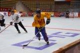 Série d'intérieur de verrouillage de vitesse de plancher d'hockey de polypropylène (professionnel de Hockey-Champion/)