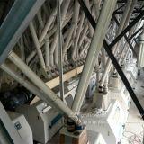 Große pneumatische Tausendstel-Maschine des Mais-120tpd mit konkurrenzfähigen Preisen in Kenia