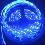 SMD5050 RGBW LED Strip/LED Streifen-Licht/flexibler LED-Streifen