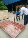 madera contrachapada al aire libre de la construcción del uso de 16m m para la venta
