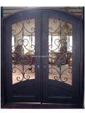 [أبرتمنت بويلدينغ] فولاذ مدخل حديد بوابات وأبواب