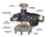 Peças de automóvel elevadas Double Row Ball Bearings Water Pump Bearing de Sealing com Surface Hardening (WB1630095G-3)