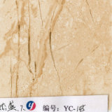 [يينغكي] [1م] عرض صفراء خطوط حجارة ساحل صورة فيلم