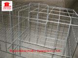 un type bâti de cage de matériel de volaille de poulet pour la poulette de grilleur de couche