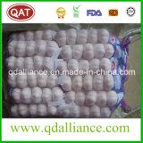 よい価格の2017新しい穀物の白いニンニク