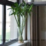 Cristalleria originale Wasp-Waisted del vaso di fiore di disegno 800ml