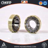 Rodamiento cilíndrico/por completo cilíndrico de la talla estándar barata de la venta caliente de rodillos con los tipos (NU210/212/213/214/215/216/217/218/219/220/222/224/226/228/230M)