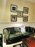 Stilvolles und typisches Weinlese-Leder-Sofa (A29)