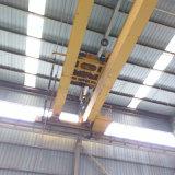 De Europese Dubbele LuchtKraan van de Straal van de Kraan van de Brug van de Balk Dubbele met de Elektrische Opheffende Machines van het Hijstoestel voor Workshop