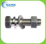 LÄRM ASTM Fastener Bolt u. Nut mit Highquality