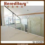 Balaustres de cristal del acero inoxidable/pasamano de cristal para el balcón (SJ-S102)