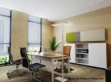Uispair 현대 사무실 10W 32V는 직사각형 강철 기본적인 알루미늄 합금 LED 램프 전기 스탠드를 엷게 한다