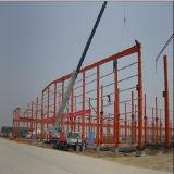 Construcción de la estructura del marco de acero (WSDSS111)