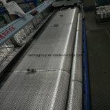 Fibre discontinue tissée par fibre de verre de C-Glace pour le bateau, 600g