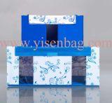 Aufbewahrungsbehälter-Organisator-Form-Beutel (YSOB06-016)